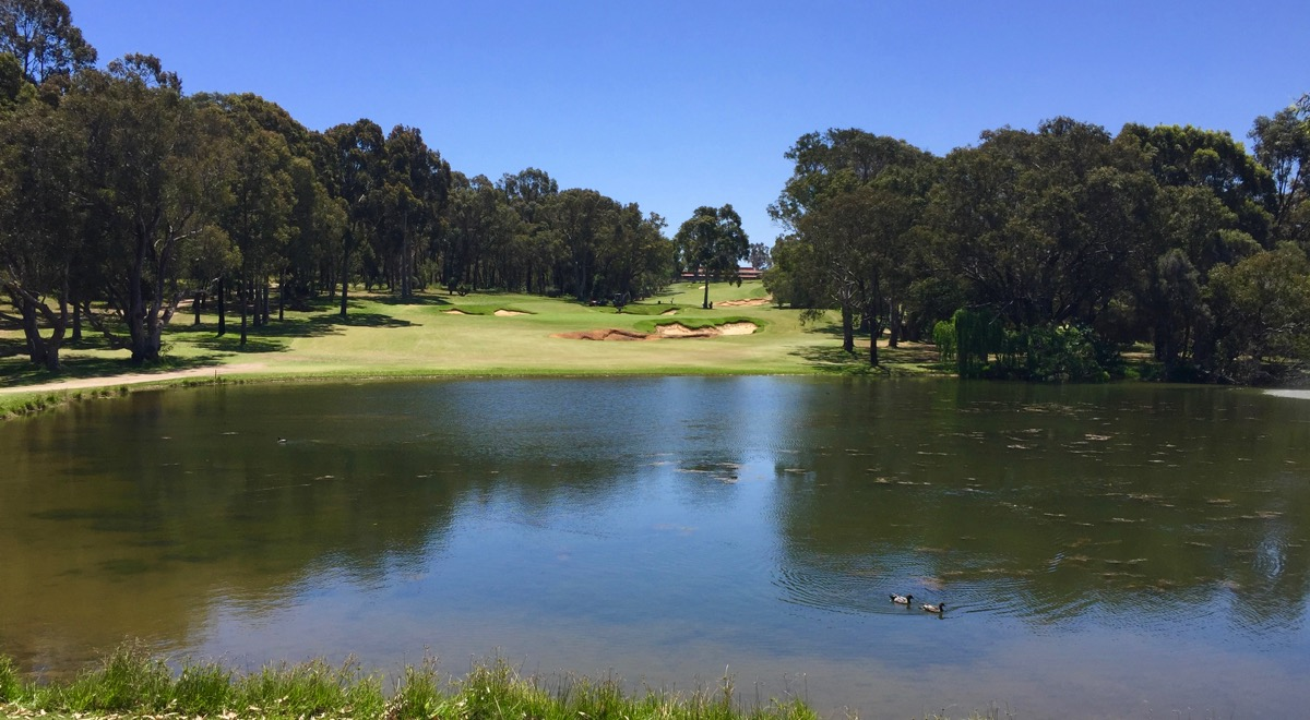 Lake Karinyup CC- hole 8
