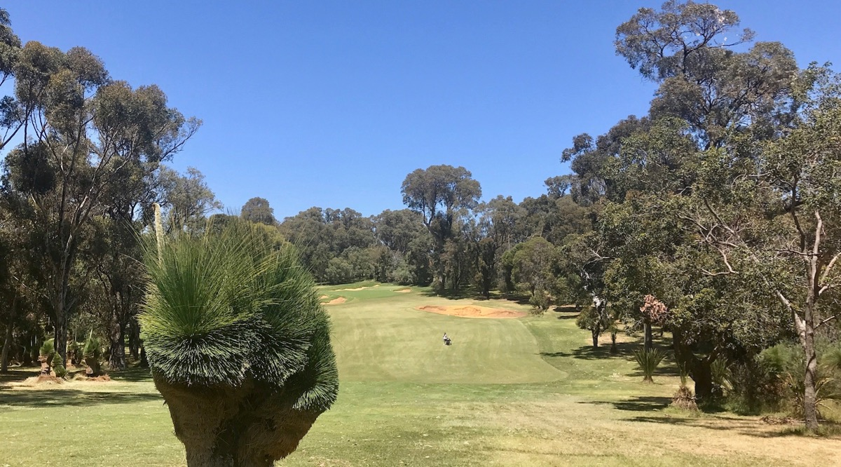 Lake Karinyup CC- hole 1