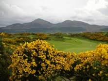 Royal County Down small