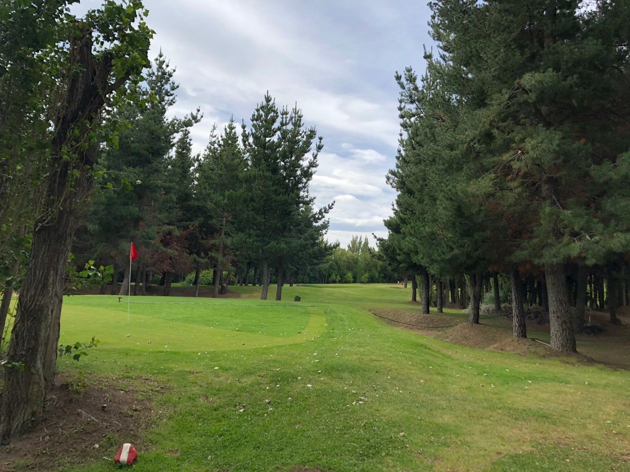 El Pinar GC- a small botanical garden with tees and greens