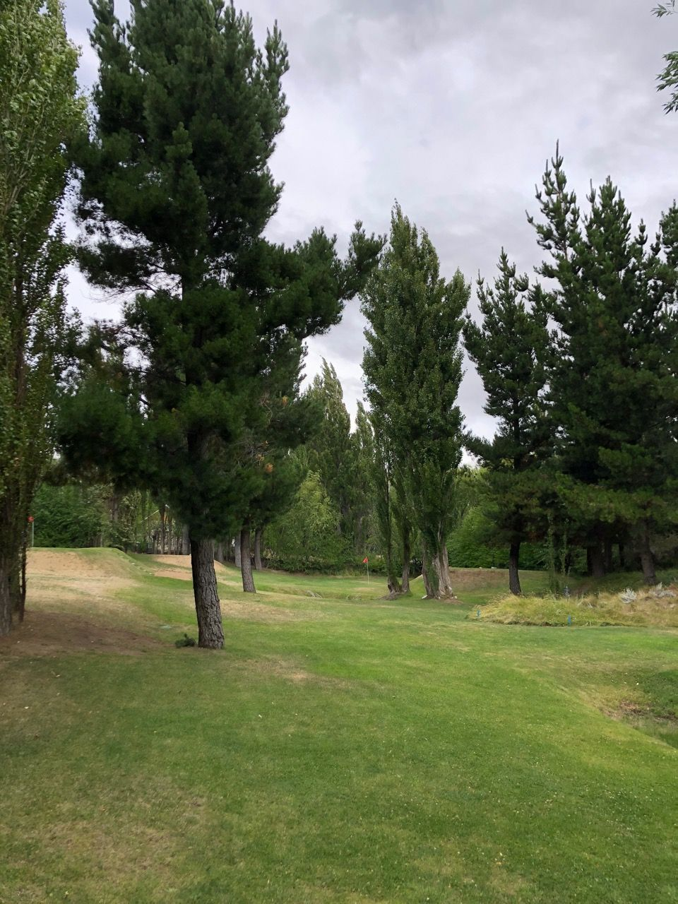 El Pinar GC- tee shots must carry and go around mature trees..