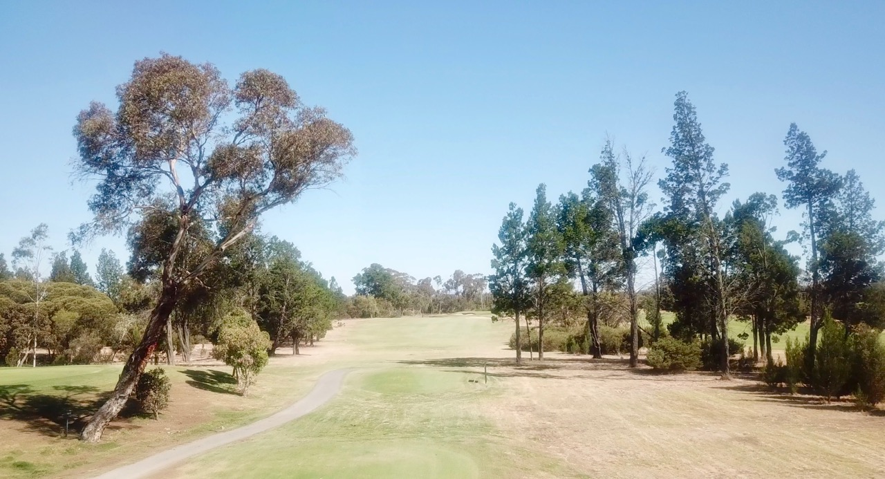 Horsham GC- hole 5 tee