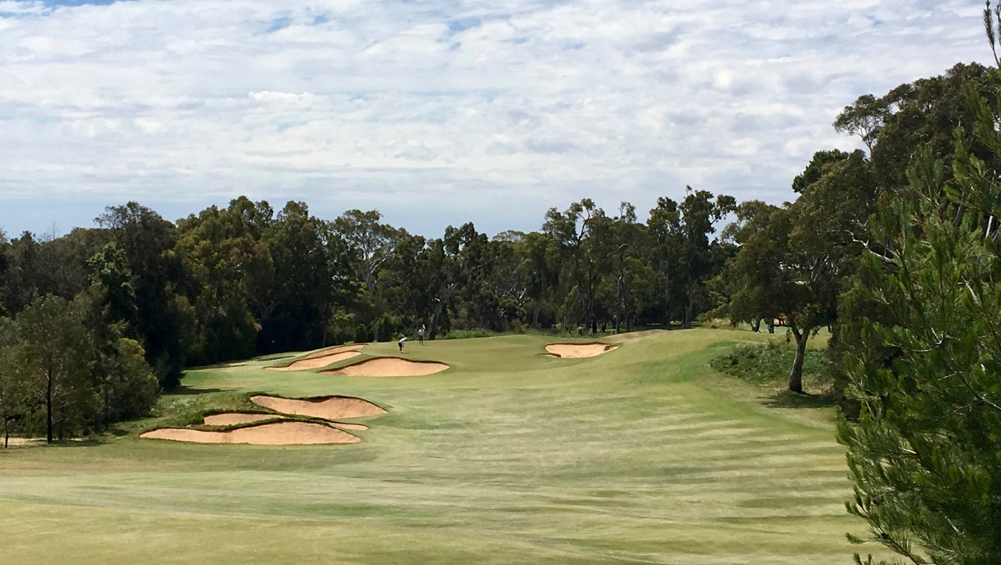 Kooyonga GC- the approach to the 4th hole