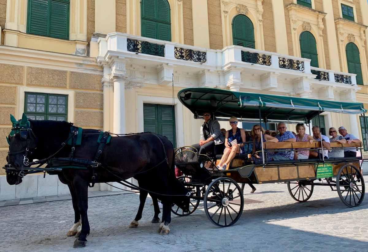 Horse Carriage ride at Schonbrunn Palace