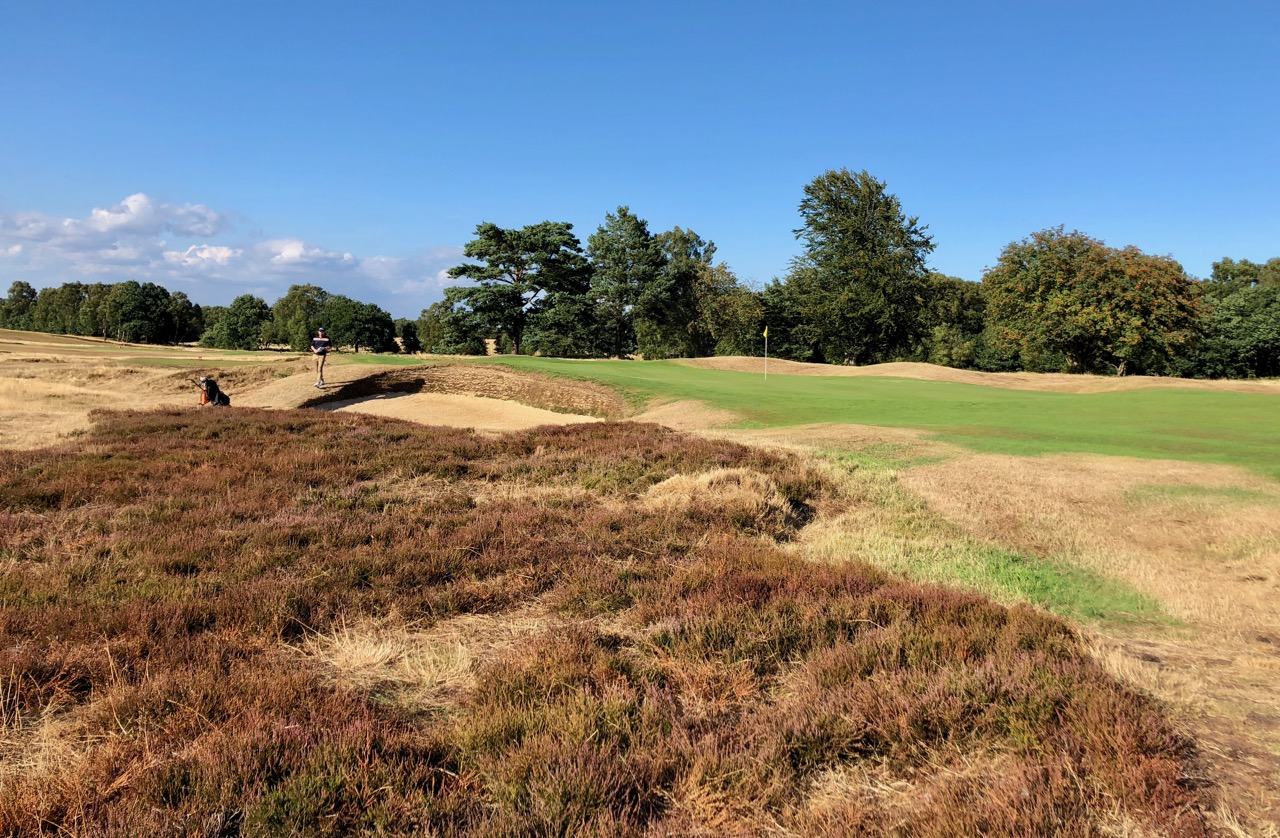 Walton Heath GC- Old Course- hole 12