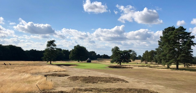 Walton Heath GC- Old Course- hole 9
