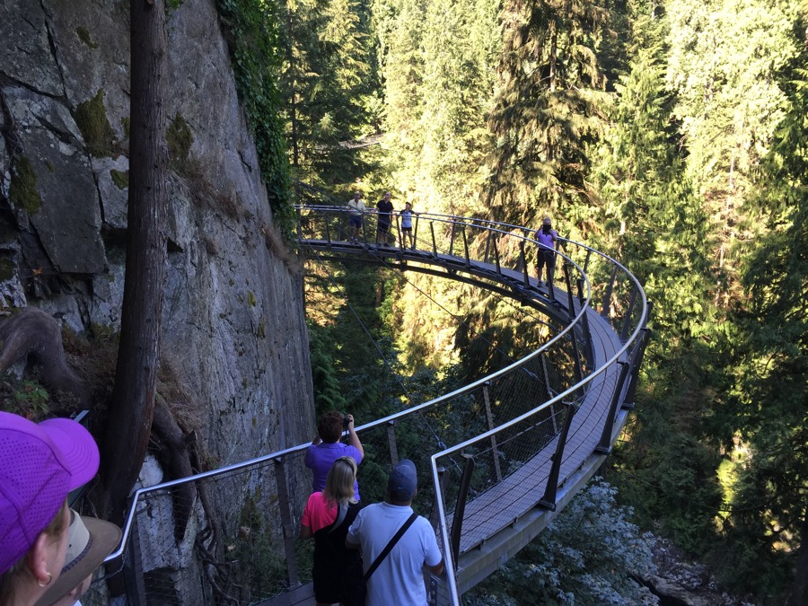 Capilano Suspension Bridge Park- the air bridge
