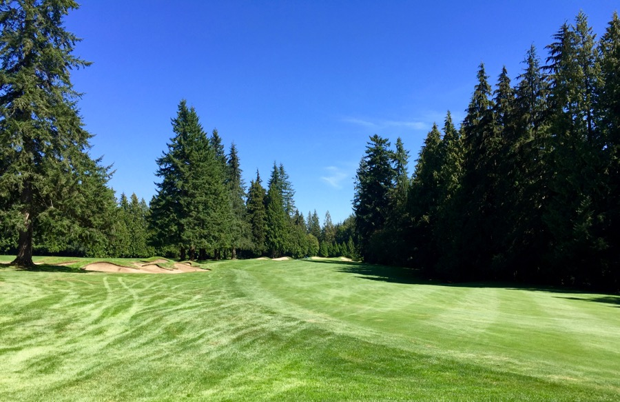 Capilano G & CC- the rough line may catch you out!