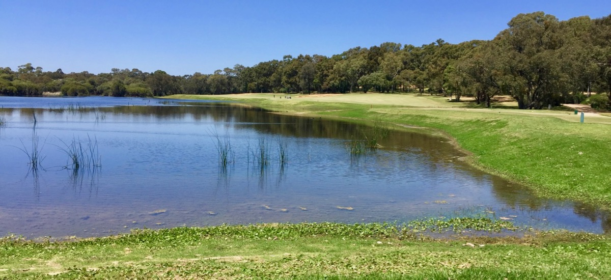 Lake Karinyup CC- Hole 3