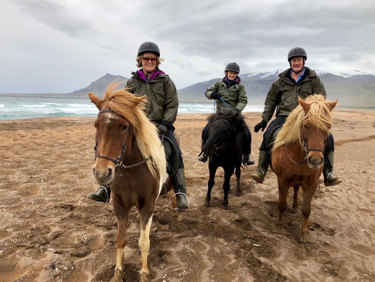 Riding the Icelandic horses