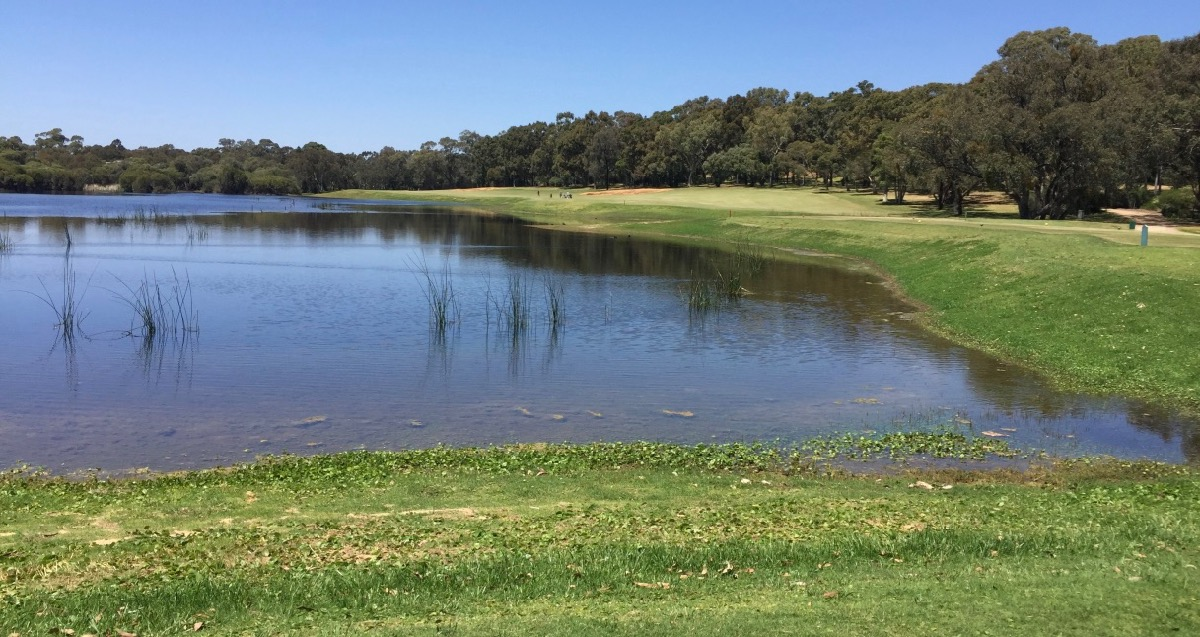 Lake Karinyup CC- hole3