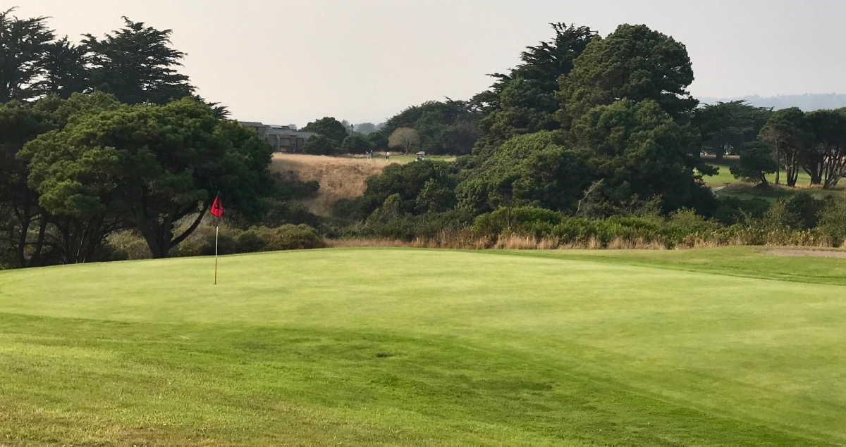 Sea Ranch Golf Links- hole 8: rear of green