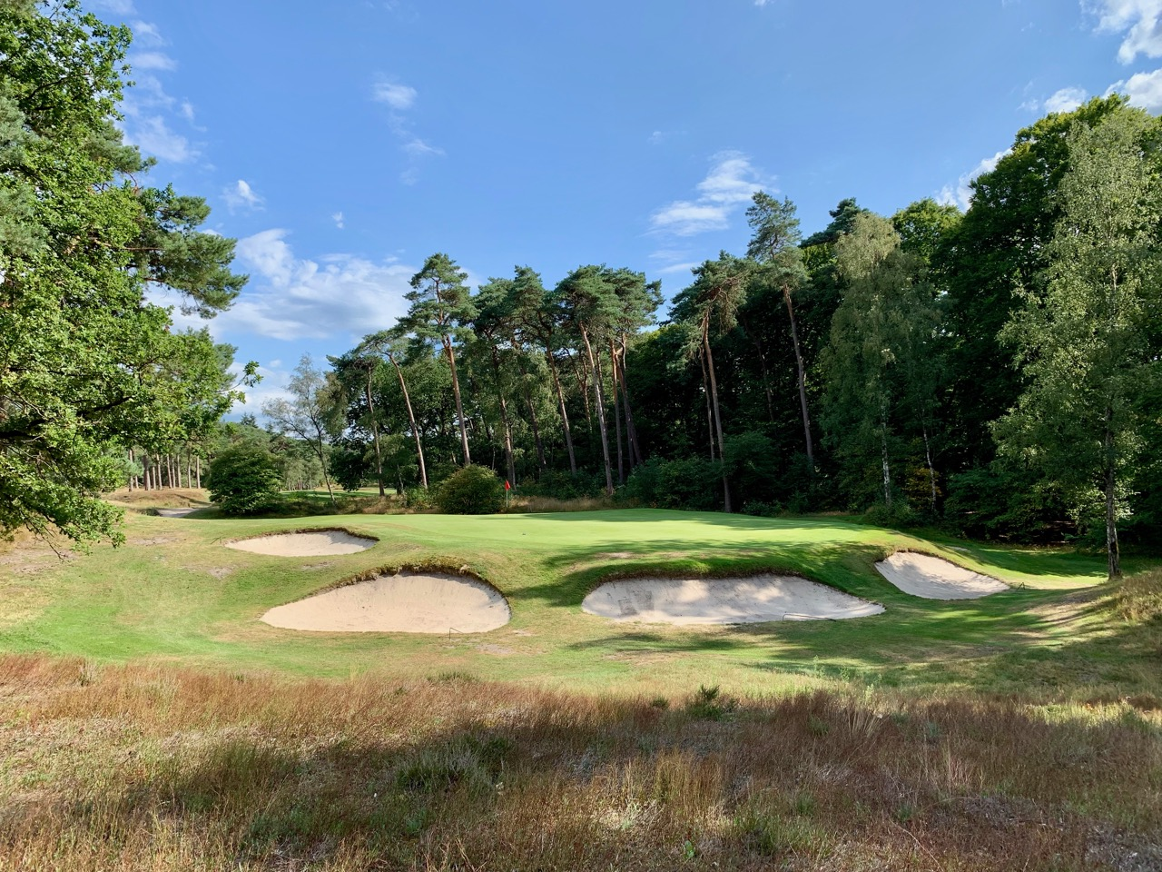 Hilversum GC- hole 14 close up