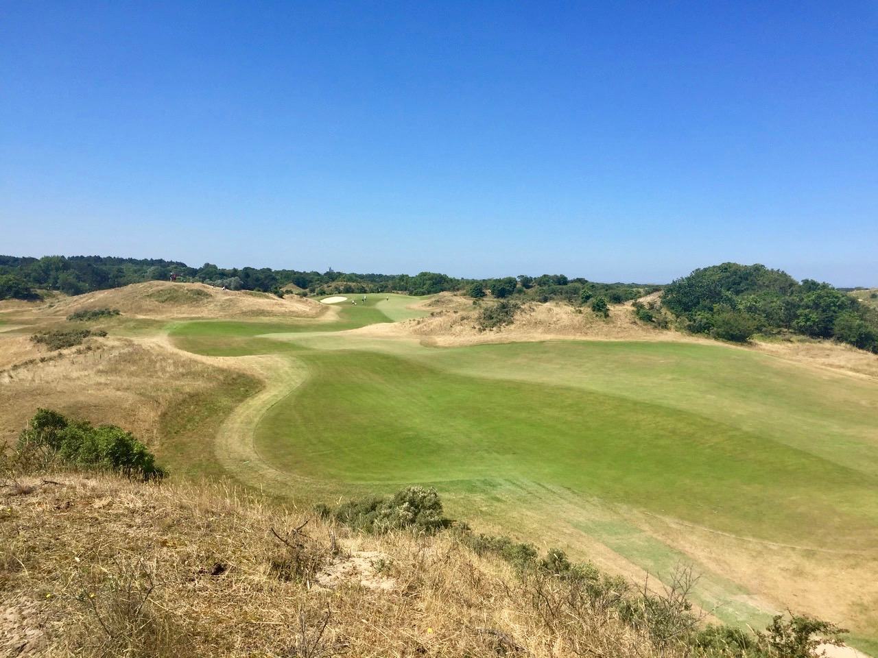 Royal Hague G & CC- hole 6