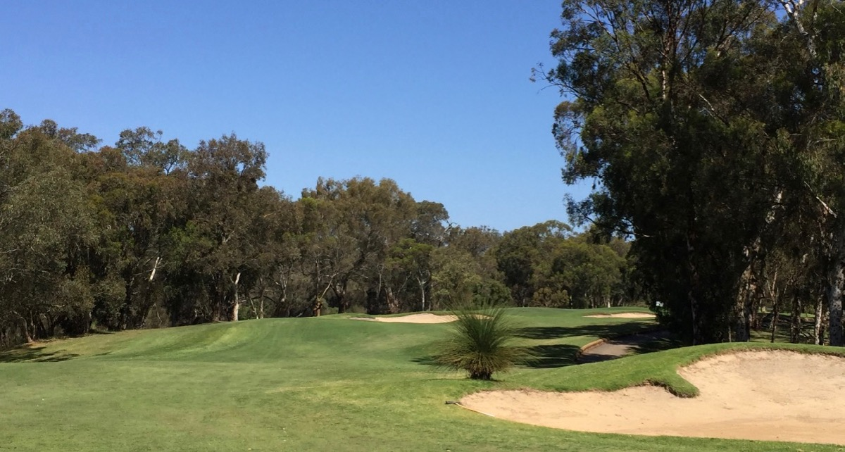 The Vines Resort- Ellen Brook: hole 14