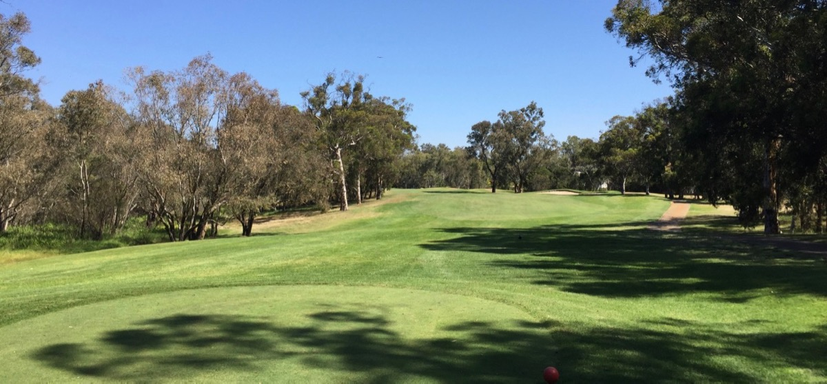 The Vines Resort- Ellen Brook: hole 15