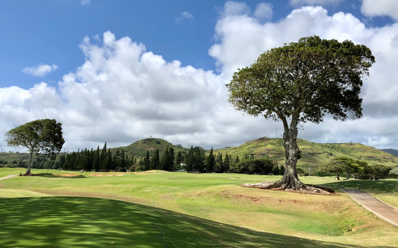 Turtle Bay Resort- Palmer Course