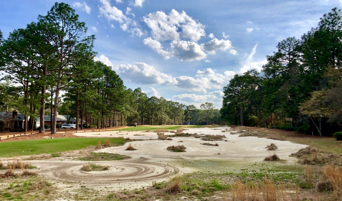 Pine Needles-  waste areas tighten the fairways