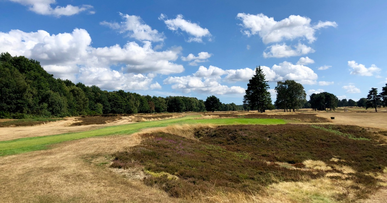 Walton Heath GC- hole 3
