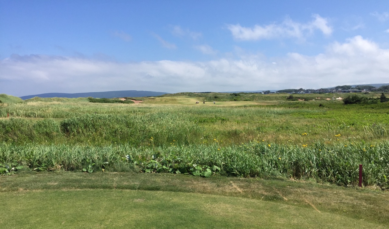 Cabot Links GC- hole 8
