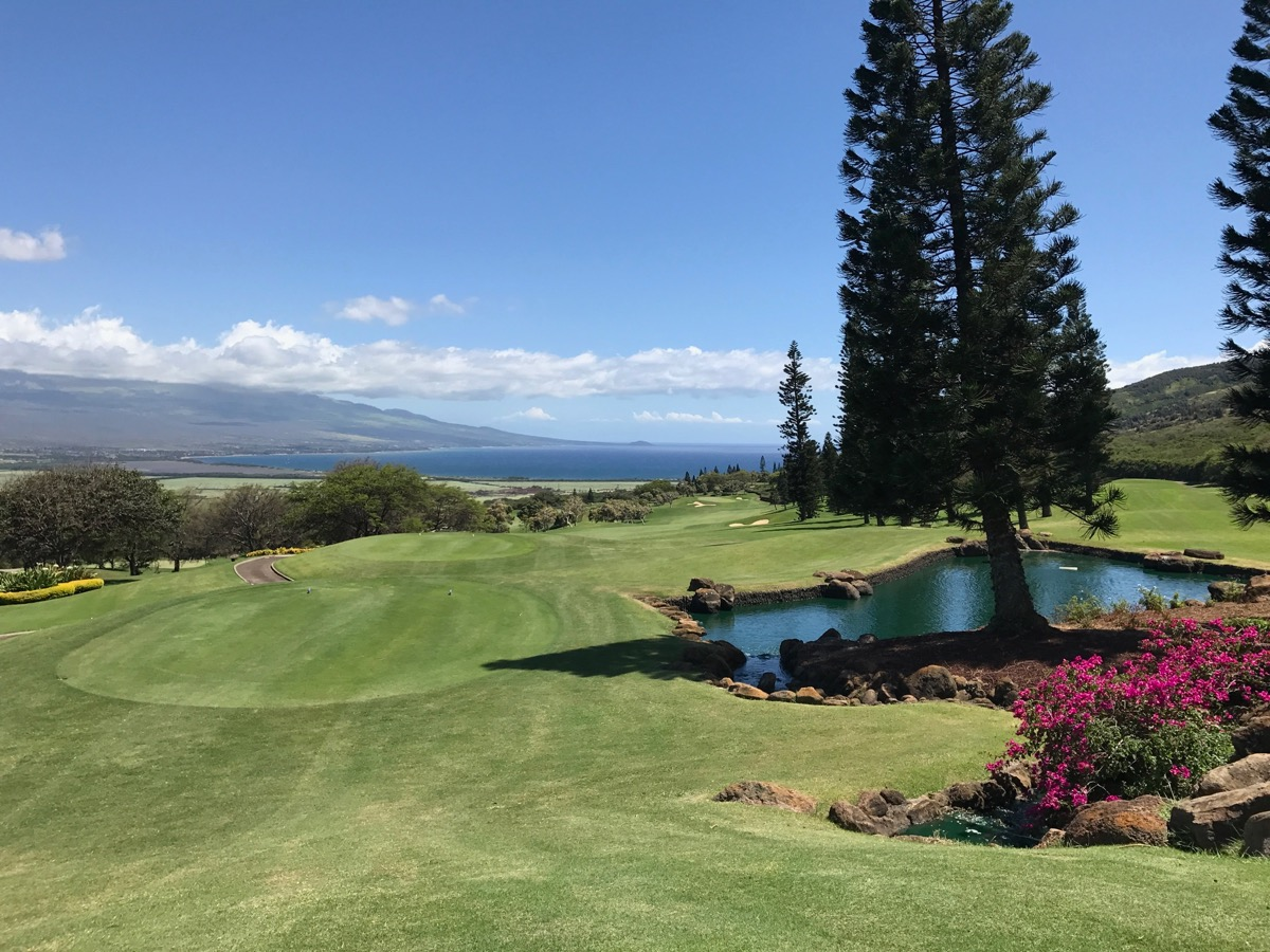The King Kamehameha GC- hole 1- a tee shot with views!