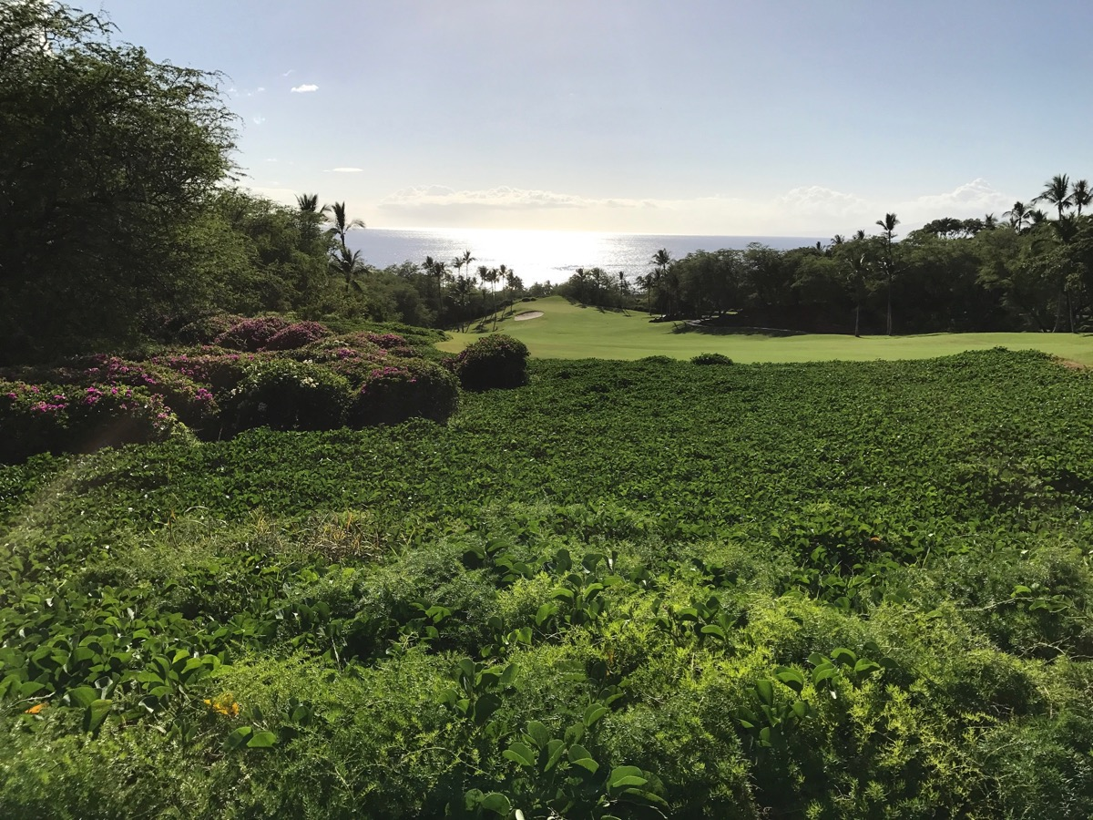 Wailea Emerald Golf Course- the tee shot on hole 1