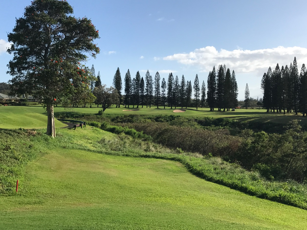 Kapalua- The Bay Course- hole 12 plays over the gorge