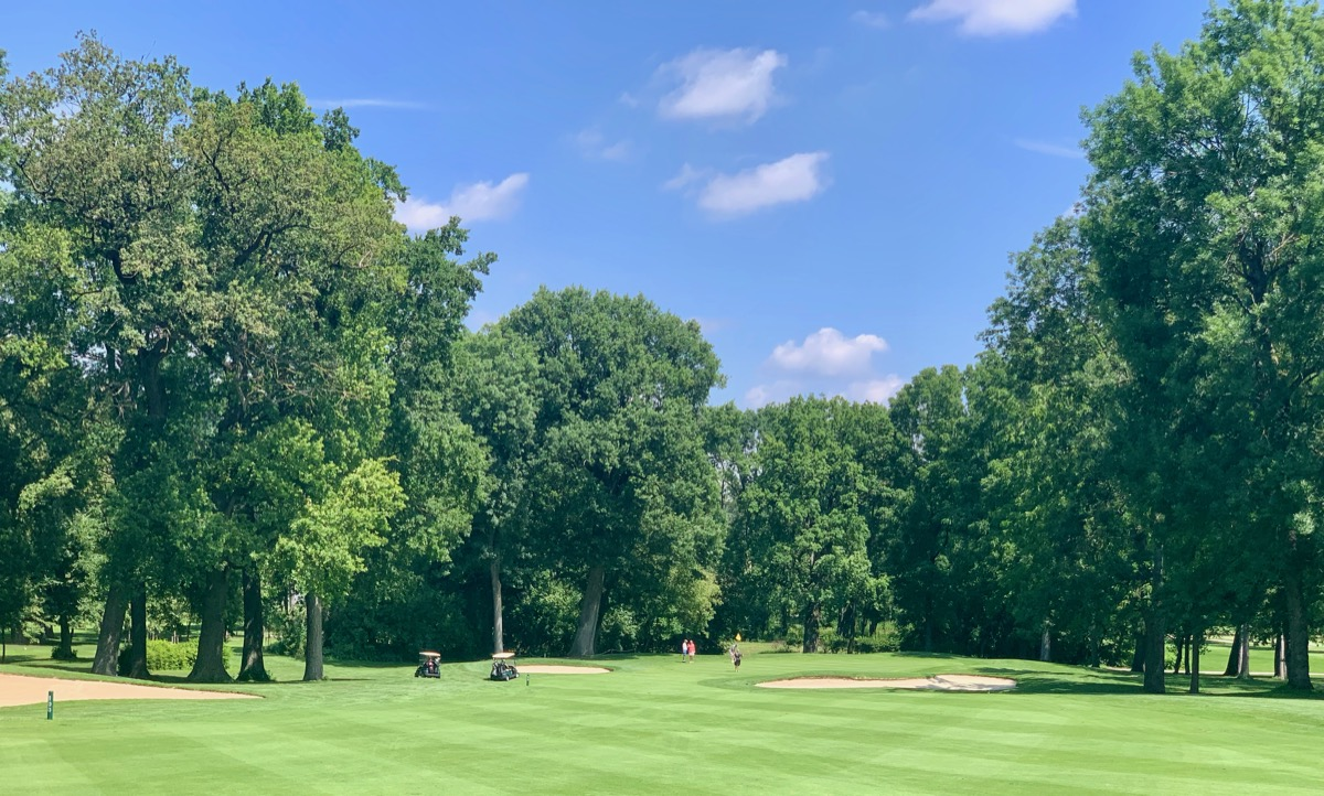 Golf Club Schloss Sconborn- hole 8